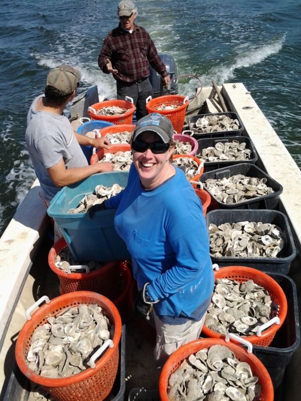 Pictured, the Shore Thing Shellfish team, from front to back: Mandy Burch, Brian Russell and Sheldon Russell planting oyster shells in the Chesapeake Bay. Photo courtesy of Shore Thing Shellfish.